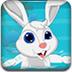 照顾小白兔