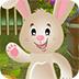 救援大耳兔