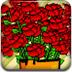 繁忙的花店2